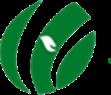 河南还原万博网页版手机登录科技有限公司