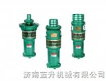 山东充水式潜水泵