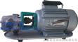 WCB微型齿轮油泵,微型油泵,微型齿轮泵