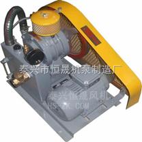 江苏恒晟HC-120S微型回转式鼓风机
