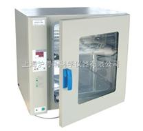 上海博迅热空气消毒箱/干烤灭菌器GR-420