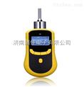 氢气检测仪,泵吸式氢气检测仪