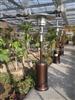 德阳天然气取暖器-绵阳燃气取暖器-广元伞形取暖器-遂宁液化气取暖器