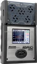 MX6複合式氣體檢測儀,MX6多氣體檢測儀
