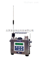 AreaRAE 無線複合氣體檢測儀