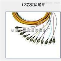 电信级12芯光纤束状尾纤