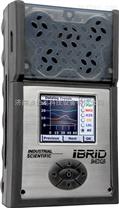 英思科MX6多參數氣體檢測儀
