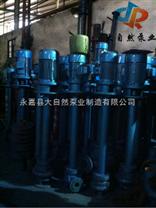 供应YW200-350-25-37YW液下泵