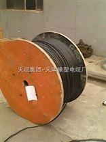 ZR-HYA 阻燃通訊電纜