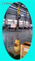 HSJ280-46三螺杆泵船用扫仓泵