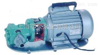 WCB微型齿轮式输油泵