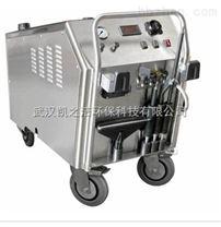 工业饱和蒸汽清洗机