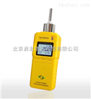 GT901可燃气检测仪 (CH4浓度)/北京现货销售