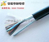 ZA-JYVP2信号电缆IJVP2VP2R阻燃电缆