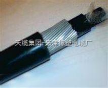 ZR-DJFFP3-32鋼絲鎧裝耐高溫計算機電纜