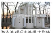 广东省潮州市市泳池臭氧发生器设备bnbv32