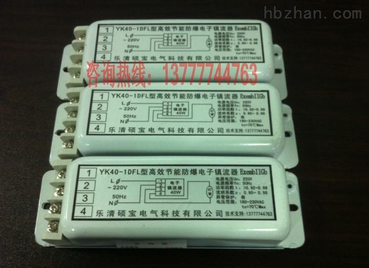40W一托一高效节能防爆电子镇流器FBDZ40-1DFL