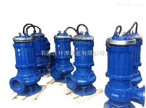 300QW950-24-110QW矿用潜水排污泵