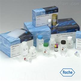 雞轉化生長因子β2(TGF-β2)ELISA試劑盒