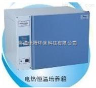 DHP-9032上海一恒电热恒温培养箱