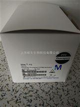 Millex-FG疏水过滤器0.2um孔径(PTFE)SLFG025NS