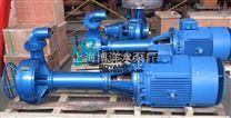NL型液下式排泥泵  铸铁泥浆泵 排泥泵