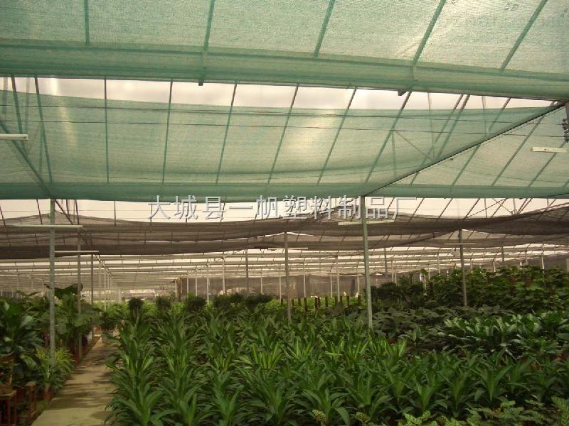 长沙蔬菜大棚遮阳网,长沙花卉/草坪/盖土网