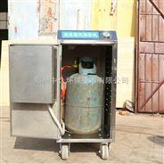 ZJR20-5-燃气环保型蒸汽清洗机