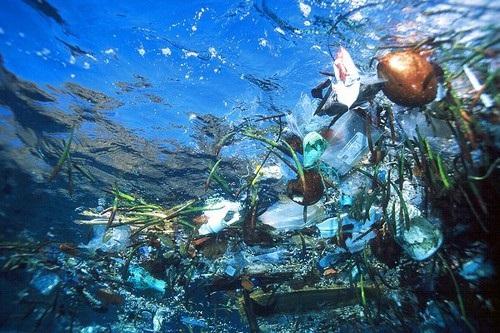 环境污染概念图片头骨疯狂垃圾id.53964162dreamstime.