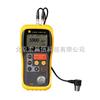 TT300/TT300A 超声波测厚仪