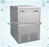 IMS-250全自动雪花制冰机厂家