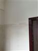 石膏隔墙板多少钱