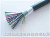 50*2*0.5HYA大对数电缆