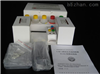 猴Ⅳ型胶原(Col Ⅳ)ELISA分析试剂盒