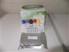 喹诺酮类(Chinolone)ELISA检测试剂盒