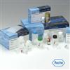 大鼠Ⅰ型胶原交联羧基末端肽(ⅠCTP)ELISA试剂盒
