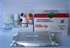 鸡免疫球蛋白A(IgA)ELISA试剂盒