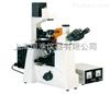 BM3000D倒置荧光显微镜