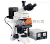BM2000Z落射荧光显微镜